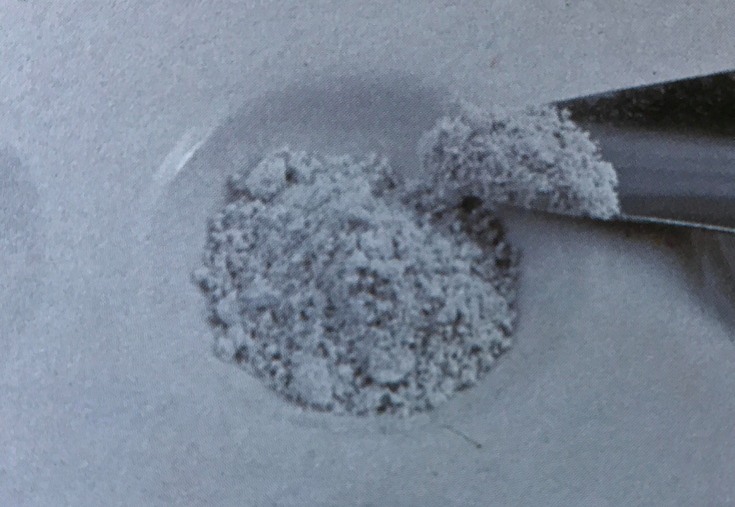 White powder placed in a depression.