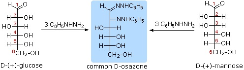 http://www2.chemistry.msu.edu/faculty/reusch/VirtTxtJml/Images3/osazone2.gif