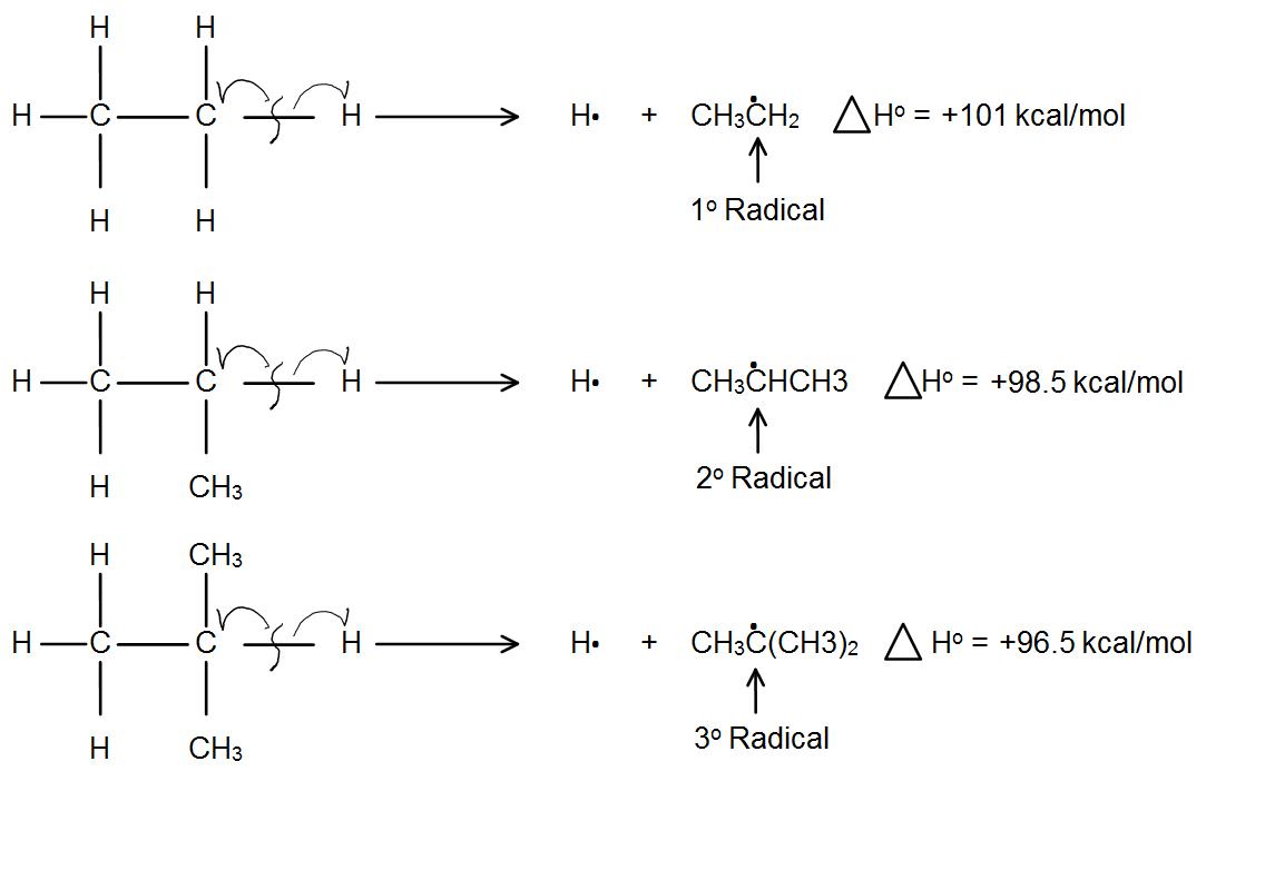 carbocat1 (1).png