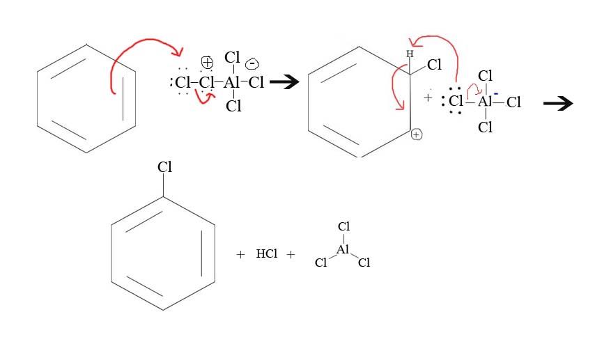 Halogenation of ...Organic Chemistry Solutions Pdf