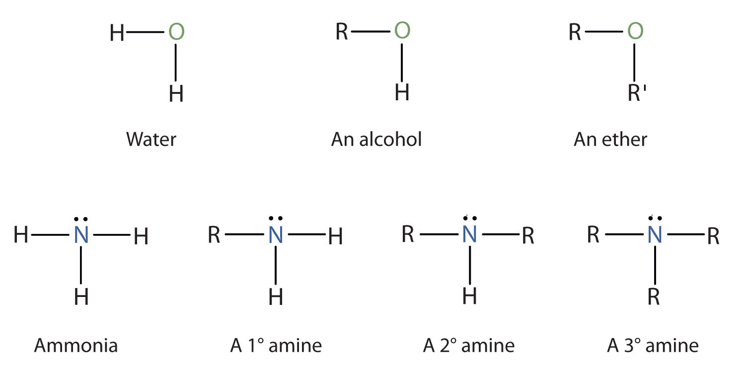 15 10 Amines Structures And Names Chemistry Libretexts