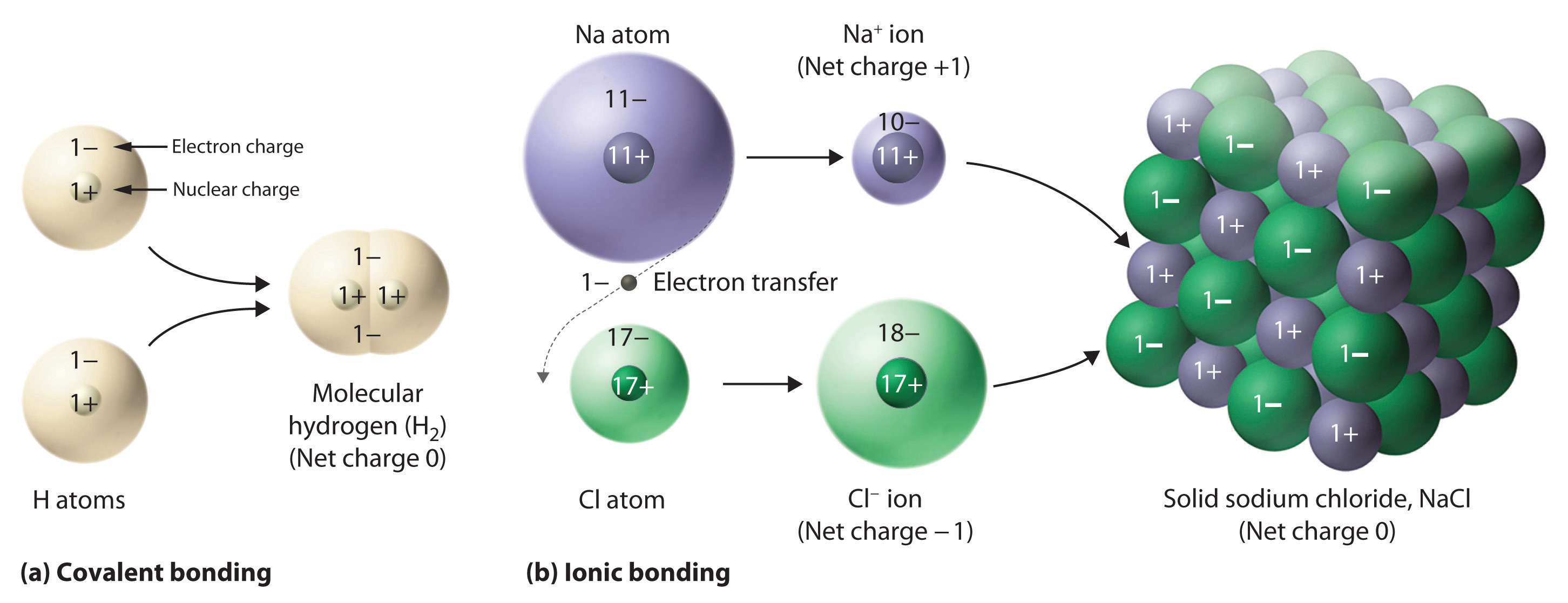 Ionic Compound Model  b  The ionic compound NaCl